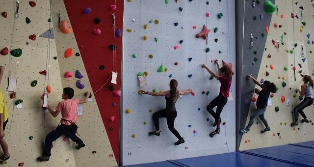 Les grimpeurs en championnat départemental